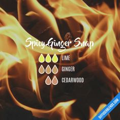 Spicy Ginger Snap - Essential Oil Diffuser Blend