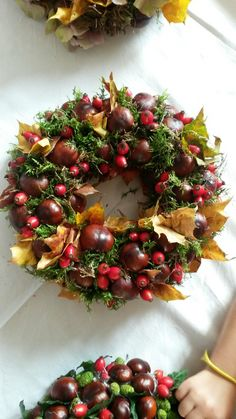 Autumn Wreaths, Christmas Wreaths, Christmas Crafts, Fall Decor, Holiday Decor, Deco Floral, When I Grow Up, Nature Crafts, Xmas Decorations
