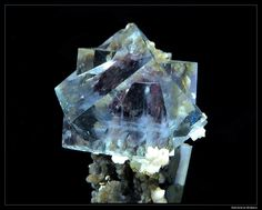 Fluorite / Mineral Friends
