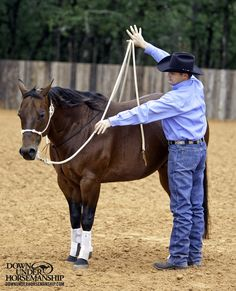 Exercise #8: Flexing the Head and Neck  Goal: You should be able to get the horse to flex to both sides by picking up on the lead rope with only two fingers. The horse's nose should be able to touch his belly in the same place the girth would normally be.  More about the exercise: https://www.downunderhorsemanship.com/Store/Product/MEDIA/D/252/
