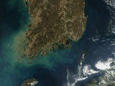 Autoridades sobem para 290 número de desaparecidos em naufrágio | #CoréiaDoSul, #IlhaDeByeongpyung, #Naufrágio, #Yonhap