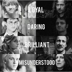 Loyal Daring Brilliant or Misunderstood | Harry Potter | Ron Weasley | Sirius Black | James Potter | Hermione Granger | Remus Lupin | Draco Malfoy | Severus Snape | I think Ginny should be there too, as Daring --> yes & I'd switch James to Loyal and Sirius to daring. Sirius was also loyal, but he was more daring