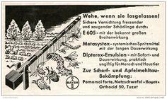 Original-Werbung/ Anzeige 1957 - BAYER / E605 / METASYSTOX / DIPTEREX GEGEN SCHÄDLINGE -  ca. 115 X 65 mm