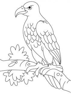 An angry eagle sitting on a branch coloring page | Download Free An angry eagle sitting on a branch coloring page for kids | Best Coloring Pages