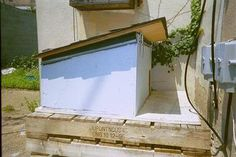 Outdoor Shelters for Feral Cats
