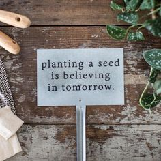 """Our""""Planting a Seed"""" Garden Stake makes a great addition to agarden, flower bed, or flower pot. The sign features text that says,""""planting a seed is believin"""