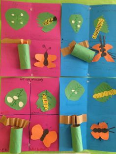 foldables for butterfly life cycle | Life Cycle of a Butterfly