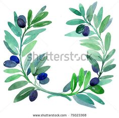 Google Image Result for http://image.shutterstock.com/display_pic_with_logo/403393/403393,1302285737,1/stock-photo-olive-branches-water-color-painting-75023368.jpg