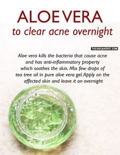 Aloe vera is well known for its intense skin care properties. The powerful anti-inflammatory and anti-bacterial properties help to treat pimples, scars and skin damage. It is also one of the most popular home remedies to help cure and prevent acne scars. Skin Tips, Skin Care Tips, Clear Acne Overnight, Pimples Overnight, Overnight Acne Treatment, Overnight Pimple Remedies, Beauty Care, Beauty Hacks, Beauty Secrets