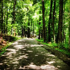 Largest city park anywhere, located at the end of Belle Meade Boulevard, this park is a gem.  Playgrounds, hiking trails, and dedicated biking trails.  Very near Cheekwood Botanical Gardens, so you can combine the two.