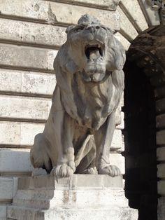 Oroszlán-szobor a Budavári Palota Budapest, Magyarország