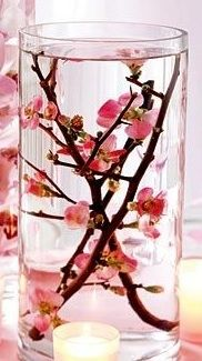 One of the cakes will be raised up on cylinder vases with flowering branches submerged inside them. Succulent Wedding Cakes, Succulent Centerpieces, Succulent Bouquet, Floral Centerpieces, Flower Arrangements, Birthday Centerpieces, Wedding Centerpieces, Cherry Blossom Centerpiece, Cherry Blossom Party