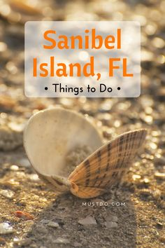 Things to do on Sanibel Island Florida. Attractions tours family fun activities shopping restaurants and more. Visit Florida, Florida Vacation, Florida Travel, Florida Beaches, Clearwater Florida, Sarasota Florida, Florida Keys, Florida Living, Florida Usa