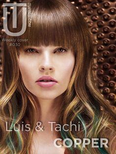 Portada #030 Copper de Luis & Tachi