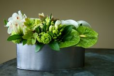 Beautiful green flower arrangement with green anthurium by Clare Day Flowers. Small Flower Arrangements, Vase Arrangements, Floral Arrangement, Green Flowers, Small Flowers, Corporate Flowers, Funeral Arrangements, Sympathy Flowers, Elegant Flowers