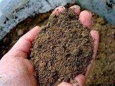 Essai de bricolage pour les sols acides ou alcalines. 1.Scoop un peu de terre dans un récipient. Ensuite, ajoutez une demi-tasse de vinaigre. Si le sol bulles ou pétille, il est alcalin. 2. S'il ya aucune réaction, ramasser un échantillon de sol frais dans un second récipient. Ajouter une demi-tasse d'eau et mélanger. Ensuite, ajoutez une demi-tasse de bicarbonate de soude. Si le sol bulles ou pétille le sol est très acide..