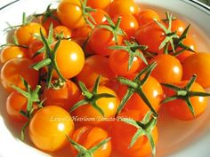 44 top picks for the best tasting tomato varieties for your garden rh pinterest com