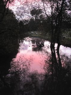 The river near St Mary's church in Thame; at dusk.