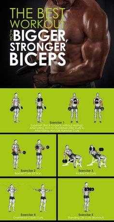 The Best Workout for Bigger, Stronger Biceps