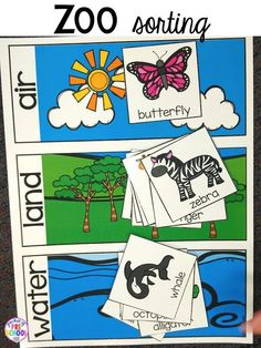Zoo sorting activity for a zoo theme. Desert art FREEBIE. Prefect for preschool, pre-k, and kindergarten.
