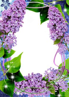 Beautiful Transparent PNG Frame with Lilac
