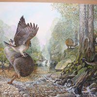 End of the Megafauna – Peter Schouten Wildlife Artist Prehistoric Wildlife, Prehistoric World, Prehistoric Creatures, Wildlife Paintings, Wildlife Art, Animal Paintings, Extinct Animals, Zoo Animals, Extinct Birds