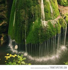 Jahzz | #Majestic_waterfall