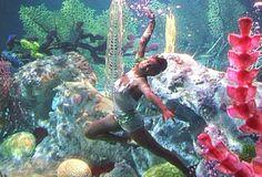 Best underwater shot.