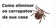 Nada mais desagradável do que ver nosso animal de estimação infestado de pulgas e carrapatos.Esses bichinhos parasitas se alimentam de sangue.Parece horrível?E é mesmo!Eles provocam:- Fortes coceiras- Febre