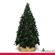 47a1e52decd Árboles de  Navidad · PREMIUM ESTILIZADO PUNTA BLANCA 210CM