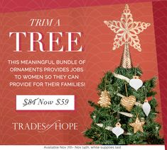 Trim a Tree Bundle- featuring the Golden Bethel Star made by artisans in India and a collection of white and gold ornaments from Haiti and India. Christmas Decorations, Christmas Tree, Christmas Ornaments, Holiday Decor, Gold Ornaments, Bright Future, Deck The Halls, Haiti, India