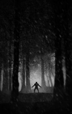 Wolverine by Marko Manev