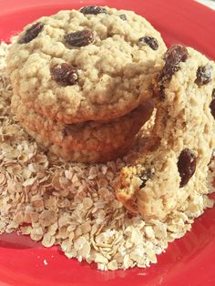 Homemade Oatmeal Raisin Spice Cookies 2 by GoldenSageHomeMade