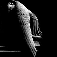 Beautiful Angel Statue P I E T A S by fiumeazzurro, via Flickr #stone #angels