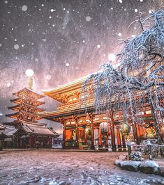 Asakusa Japan - places to visit in japan - travel destinations Japan Travel Photography, World Photography, Winter Photography, Landscape Photography, Tokyo Winter, Winter In Japan, Japanese Landscape, Fantasy Landscape, Beautiful World