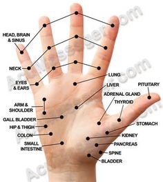 Shiatsu Massage – A Worldwide Popular Acupressure Treatment - Acupuncture Hut Acupuncture Benefits, Acupuncture Points, Massage Benefits, Acupressure Points Chart, Hand Pressure Points, Massage Pressure Points, Pressure Points For Headaches, Technique Massage, Acupressure Treatment
