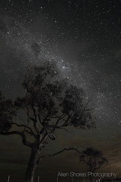Stars fall like Rain | by alienshores52