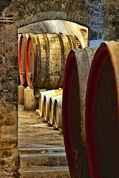 Brunello di Montalcino wine cellar, Tuscany, Italy my honeymoon xoxo Emilia Romagna, Wine Lovers, Barris, Brunello Di Montalcino, Toscana Italia, Champagne, Wine Vineyards, Under The Tuscan Sun, Tuscany Italy
