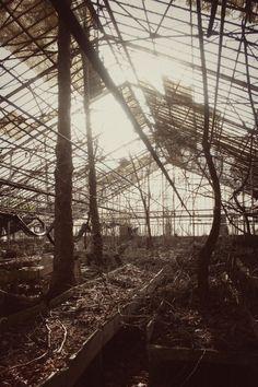 abandoned greenhouse photos
