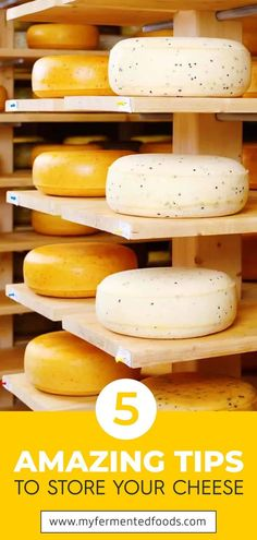 Now that you have made your cheese you need to store cheese properly for best results and taste. Different types of cheeses require different storage conditions temperature and length of time. Discover my tips for best results. Making Cheese At Home, How To Make Cheese, How To Store Cheese, Probiotic Foods, Fermented Foods, Homemade Cheese, Homemade Recipe, No Dairy Recipes, Raw Food Recipes