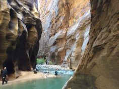 My trip to Zion canyon was Rad Zion Canyon, Get Some, Cool Pictures, Outdoor, Outdoors, Outdoor Games, The Great Outdoors