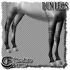 11 dun striping markings for legs and body - by Cheshire Farms