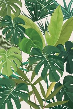 Tropical Party, an art print by marrie green - INPRNT This is a gallery-quality giclée art print on cotton rag archival paper, printed with archival inks. Plant Wallpaper, Tropical Wallpaper, Flower Wallpaper, Wallpaper Backgrounds, Palm Leaf Wallpaper, Screen Wallpaper, Art Tropical, Tropical Leaves, Tropical Design