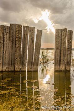 Un rayo de sol se cuela a traves de la valla que rodea la Laguna de Petrola en Albacete, España - A ray of sunshine sneaks through the fence surrounding the Laguna de Petrola in Albacete, Spain