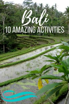 Going to Bali, Indonesia & looking for a mixture of adventure, culture, and relaxation while visiting the tropical island? Check out this list of 10 ideas! Lombok, Phuket, Costa Rica, Thailand, Palawan, Koh Tao, Bali Travel, Travel Around The World, Southeast Asia