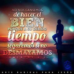 Lucha frases español vida  Dios amor