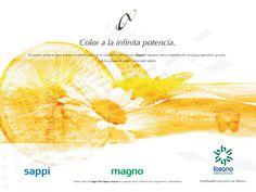 Marca: LOZANO  Proyecto: Banner publicitario
