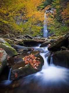 Plattekill Falls, NY by Bryan Swan, via Flickr