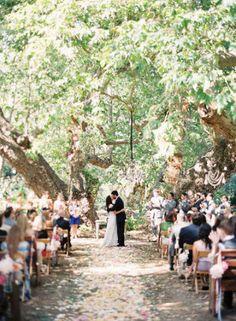 Romantic Woodland venue
