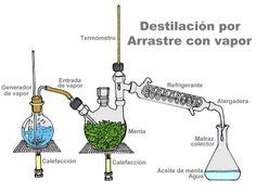 Quimica: destilación por arrastre con vapor